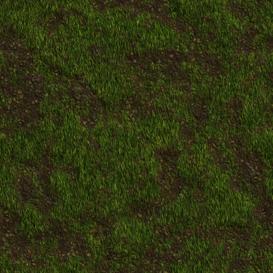 Grass Texture Set R2048 | Photos and Images | Textures